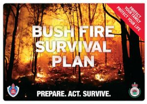 Bush fire survival.