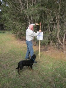 Toby the dog watches on as Council Ranger, Peter Miles advertises the draft Companion Animals Control Areas Procedure.