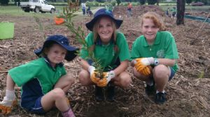 Bega Valley Primary School pupils, Anne Lucas, Kira Cesnik and Bianca Mackinnon plant native species at Kiss� Lagoon.