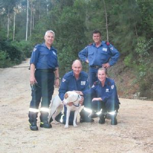 Image of rescued dog with rangers.