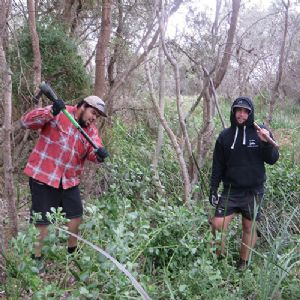 Ethan Aldridge and Joe Stewart from the Eden Local Aboriginal Land Council work crew despatching bitou in the dunes at Merimbula.