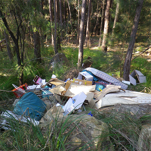 Image of rubbish dumped in the bush.