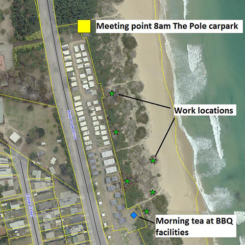 Meeting points and working area for the dune restoration works at Tathra.