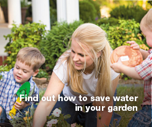 Click the image for all sorts of information and ideas to help you save water in your garden.