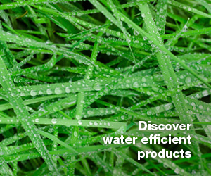 Click to discover water efficient products.