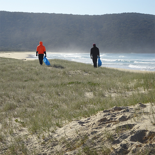 Coastal weed removal in the Bega Valley Shire.